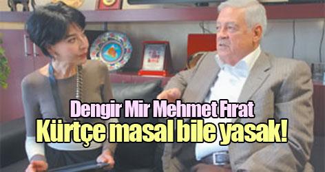 Dengir Mir Mehmet Fırat: Kürtçe masal bile yasak!