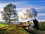 En güzel demiryolu fotoğrafları