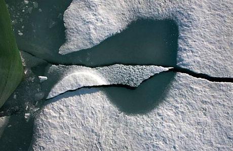 Petermann buzulu böyle eriyor galerisi resim 13