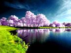 Doğadan muhteşem görüntüler