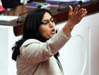 Mecliste 'Ülkede savaş yaşanıyor' tartışması!