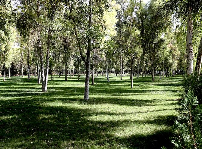 Hewler'in en büyük parkı: Sami Abdurrahman Parkı galerisi resim 21