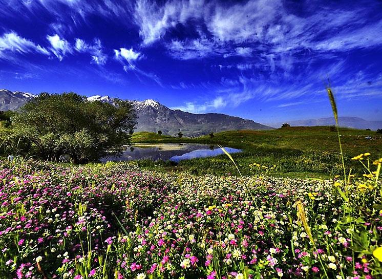 Kürdistan'ın doğa harikası: Felaw göleti galerisi resim 12
