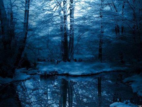 Doğadan Mükemmel Görüntüler galerisi resim 5
