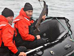 Putin gri balinanın peşinde
