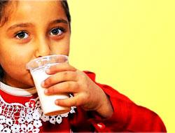 'Okul sütü' ilk gün zehirledi!