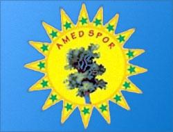 Bir grup sporsever Amedspor'u kurdu