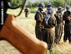 PKK kanarya sevenler derneği mi?