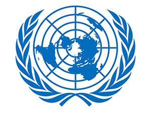 BM çalışanları Trump'ın seyahat yasağından muaf