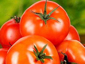 Rusya, Türkiye'den giden tonlarca domatesi geri çevirdi