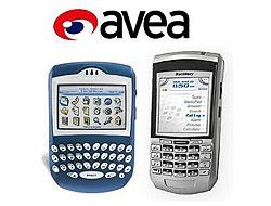 Avea abonelerine BlackBerry dağıtacak!