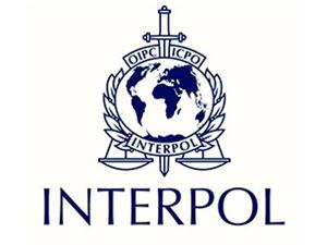 Türkiye'den Almanya'ya 1.252 Interpol kararı