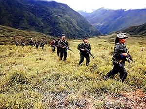FARC'ın 85 eski üyesi öldürüldü