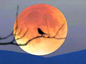 21. yüzyılın en uzun 'Kanlı Ay' tutulması cuma günü