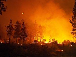 California'daki yangınlar 50 bin kişiyi evinden etti