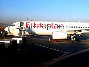 157 kişiyi taşıyan uçak düştü: Kurtulan yok