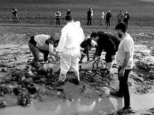 Ağrı'da sel ve yıldırım: İkisi çocuk dört kişi yaşamını yitirdi