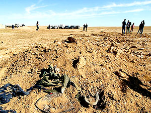 Felluce'de toplu mezar bulundu