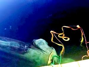 ABD'de Kristof Kolomb'un heykeli sökülüp göle atıldı