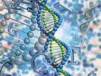 Genetik hastalık kaynaklı ölümler arttı