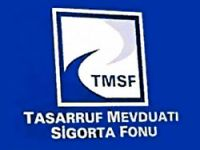 TMSF Başkanlığı'na Şakir Ercan Gül getirildi