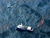 100 bin varil petrol denize akıyor!