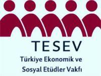 TESEV'den Kürt sorununa 17+1 formülü