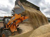 Putin tahıl ihracatını yasakladı