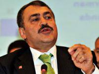 Bakan Eroğlu: Tarkan burnunu sokmasın