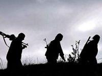 'PKK Çekiliyor, Gözü Yeni Anayasada'
