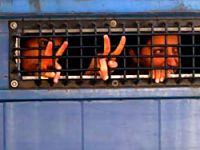 13 tıp öğrencisi tutuklandı
