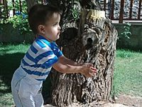 Avcılar küçük Berat'ı buldu