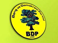 BDP'den Diyarbakır'da Anayasa çalıştayı