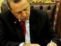 Erdoğan, Newsweek için yazdı