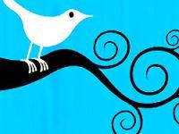 Twitter CEO'sundan Türkçe müjdesi