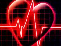 Kalp ilacı farelerde başarılı oldu