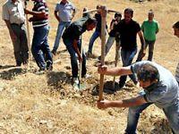 Tunceli'de 'toplu mezar' kazısı sürüyor