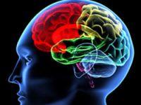 Beyin kanseri tedavisinde yeni umut