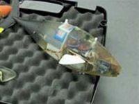Taklitçi balık robot geliştirildi