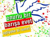 Gözler Diyarbakır'da