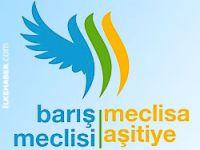 Türkiye Barış Meclisi Kürt Sorunu Çalıştayı sonuçları