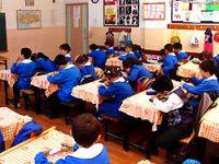 Hani devlet okulları ücretsizdi