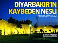 Diyarbakır'ın kaybeden nesli