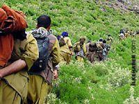 'Yüz kişilik PKK'li grup Türkiye'den çekildi' iddiası
