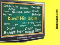 DTK Kürtçe'ye sahip çıkmaya çağırdı