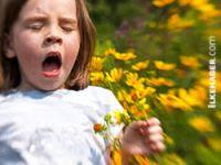 Alerjiye neden olan etkenler