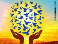 Dünya bir barış gününe daha savaşlarla giriyor