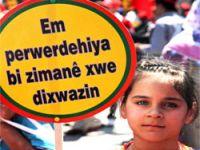 Olan Ama Pratikte Olmayan 'Kürtçe Seçmeli Ders'