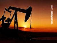 Federal Kürdistan: Petrolümüzü İsrail'e satmadık