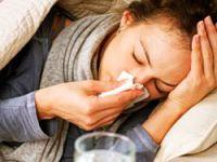 H3N2 virüsü domuz gribinden beter
